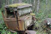 Moss covering early Ford pickup truck in classic car junkyard