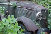 Restorable 1930's Ford pickup truck stored in classic car junk yard